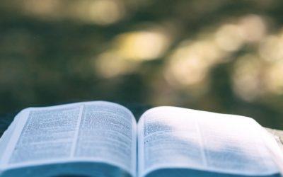 Référencement sur internet : un glossaire pour les débutants
