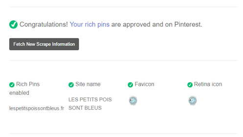 validation des épingles enrichies sur Pinterest