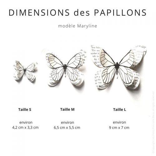 Dimensions des papillons en papier